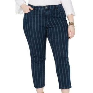 Style & Co Jagger Mid Rise Ankle Jeans Pinstripe
